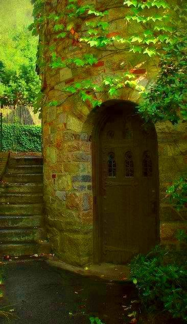 Door full of light in the enchanted forest... Fantasy