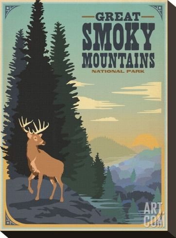 Great Smoky Mountains National Park Stretched Canvas Print by Anderson Design Group at Art.com
