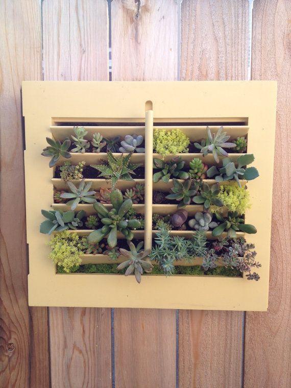 Hanging Succulent Vertical Garden in Vintage Window Shutter via Etsy