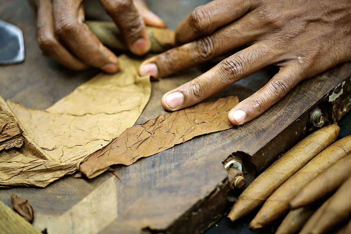 Zigarren Herstellung In 35 Schritten Erklart Zigarren Gute Zigarren Gewachs