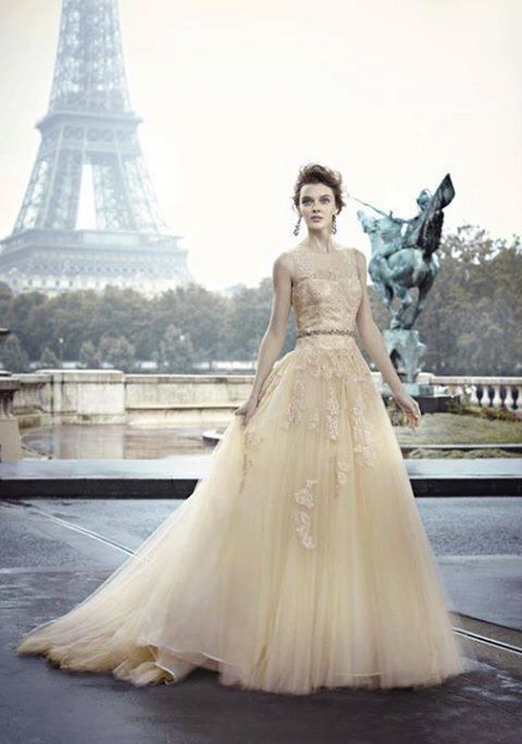 Travel Themed Wedding In Paris With A Pale Gold Wedding Dress