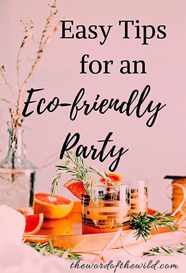 Photo of How to Throw an Eco-friendly Party – The Word of the Wild