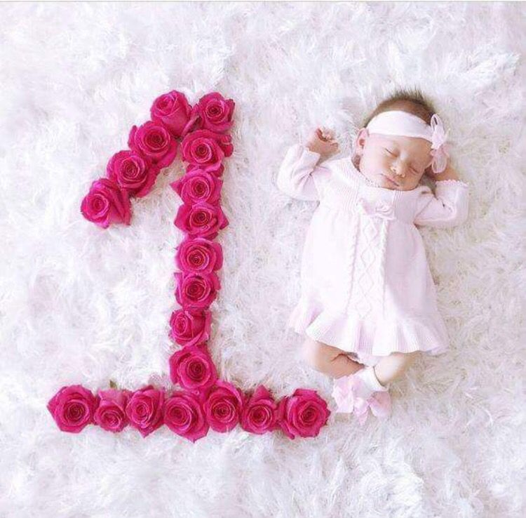 Flower Month Number Monthly Baby Photos Monthly Baby Pictures One Month Baby