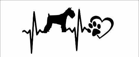 Schnauzer Dog with heart car decal