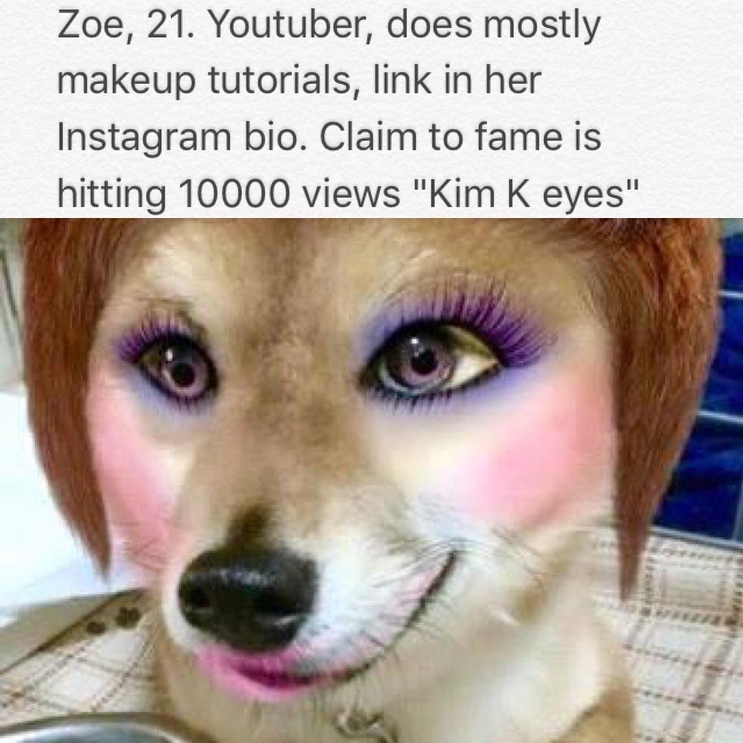 Dog Bios On Instagram Youtube Youtuber Youtubers Youtuberslife Youtubemakeup Youtubemakeupguru Kimkardashian Makeuptu Silly Dogs Bad Pun Dog Funny Dog Memes