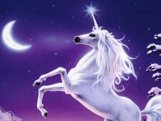 Unicorns are magical creatures who either use their magic for good, bad, or something else. There are many types of unicorn, and this quiz will tell you which one you are!