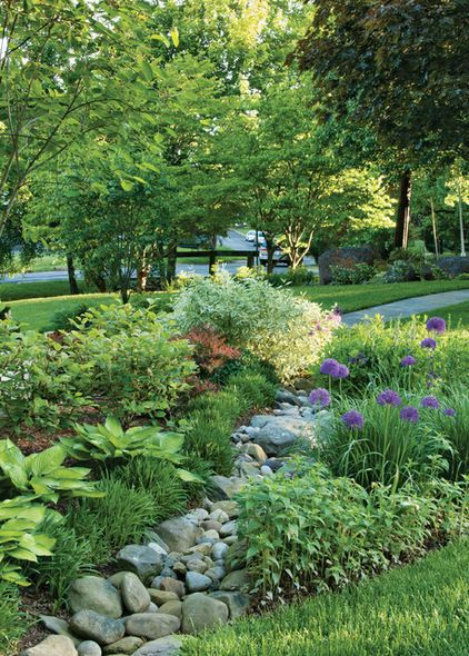 Directing water away from house with shallow channel using river rock, use plants like dogwood shrub and fothergilla fill in the borders, along with hostas and alliums.
