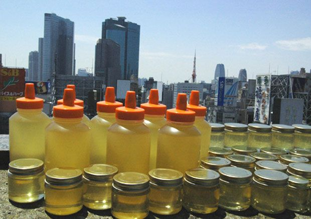 Ginza Honey   #Urban #Agriculture in #Tokyo - #Rooftop #Farms #Bees #Honey and best of all creating #Community http://www.shifteast.com/5-urban-agriculture-initiatives-in-tokyo/
