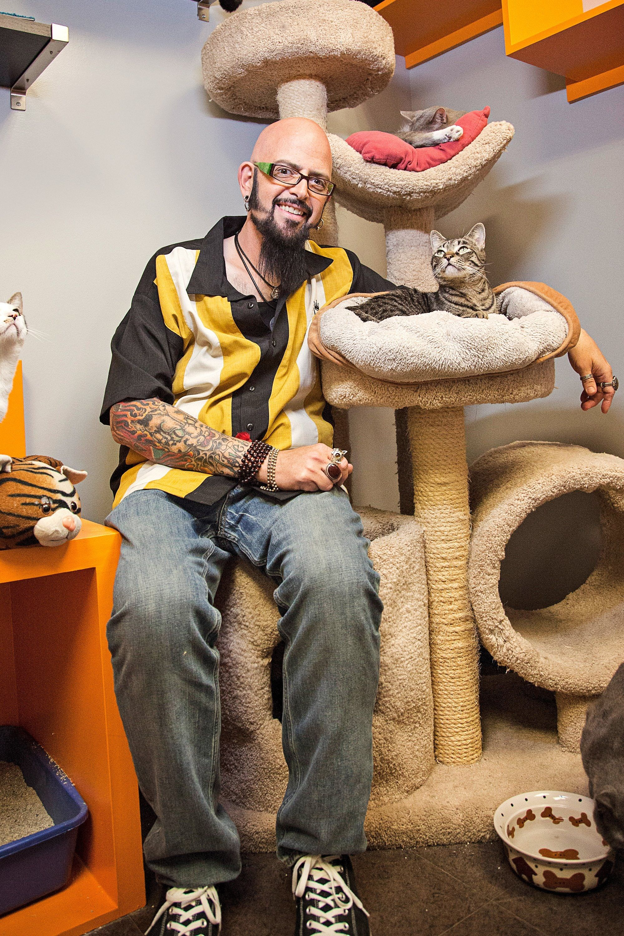 Cat Whisperer Jackson Galaxy's Advice for Keeping Your ...