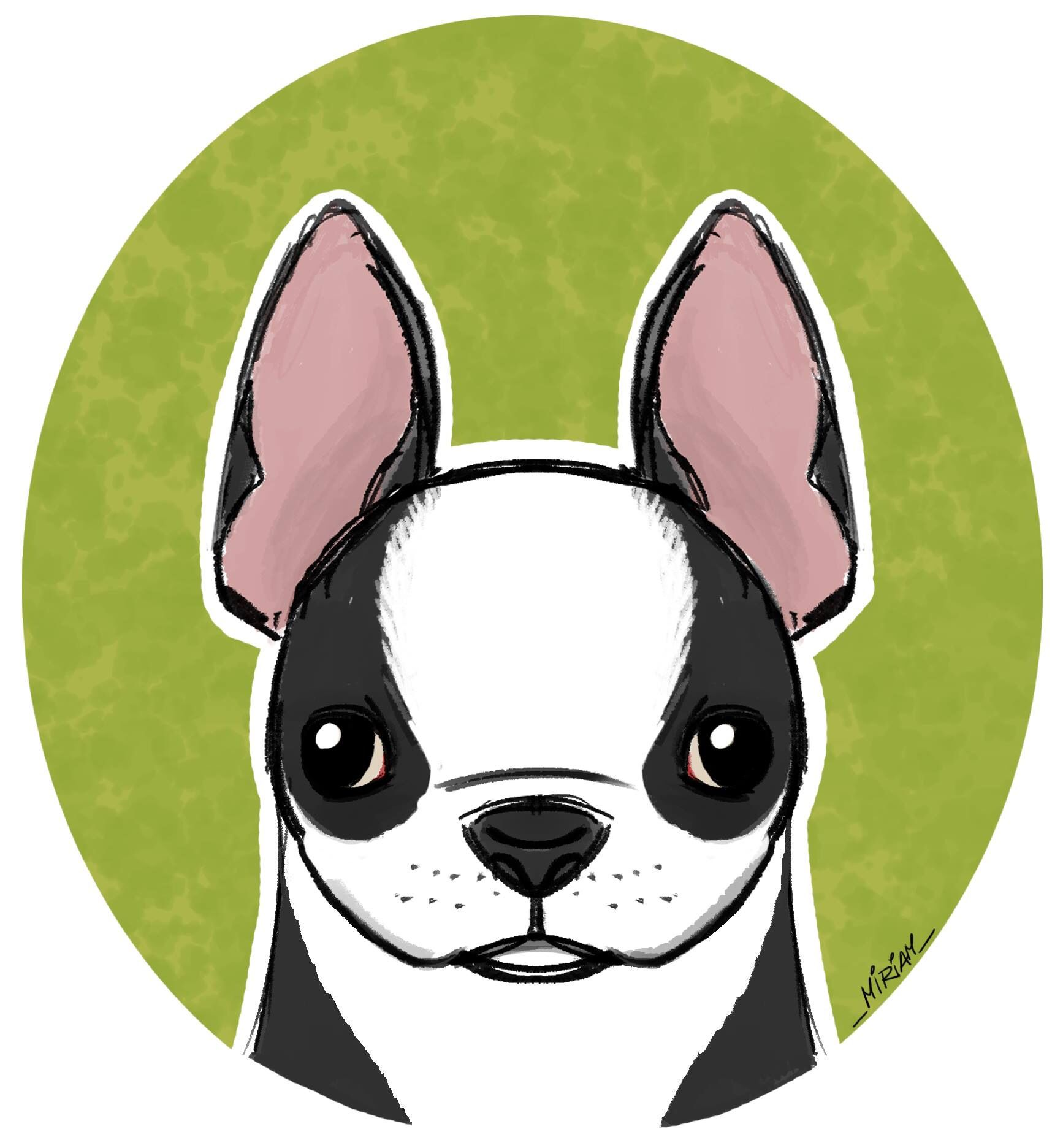 Felt Like Drawing My Hubby S Dog A Boston Terrier Drawing Sketch Bostonterrier Concept Art Characters Animal Illustration Character Design Inspiration