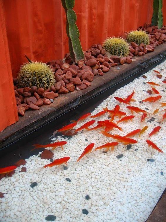 Ikan Koi Beautiful Backyards Small Water Gardens Water Garden
