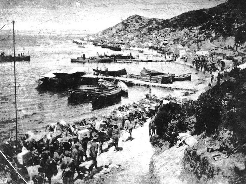 gallipoli campaign development of kiwi australian As the gallipoli campaign from kiwi ingenuity to our reliance on britain shrinking and continues to be celebrated annually documents similar to gallipoli - fq4.