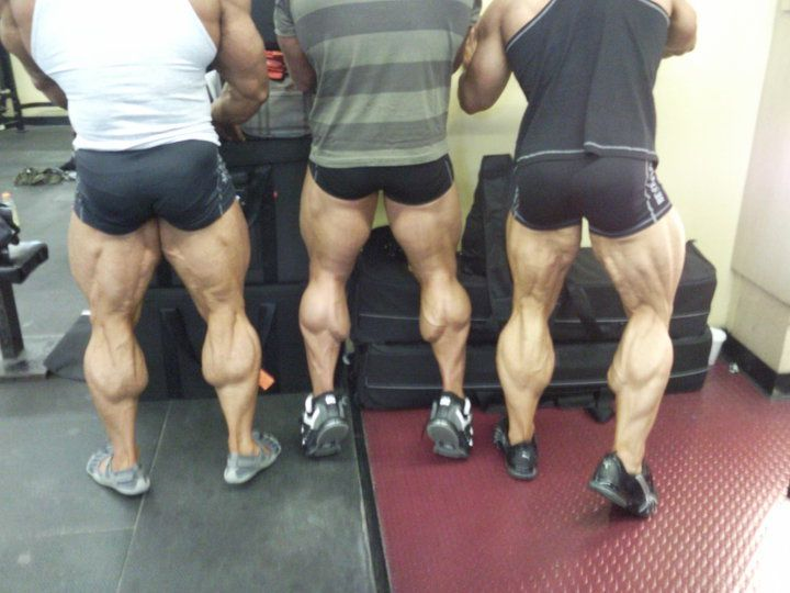 Why Your Calves Aren T Growing Funny Captions Leg Day Humor Humor