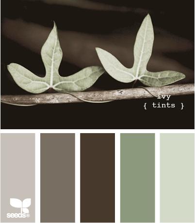 ivy tints