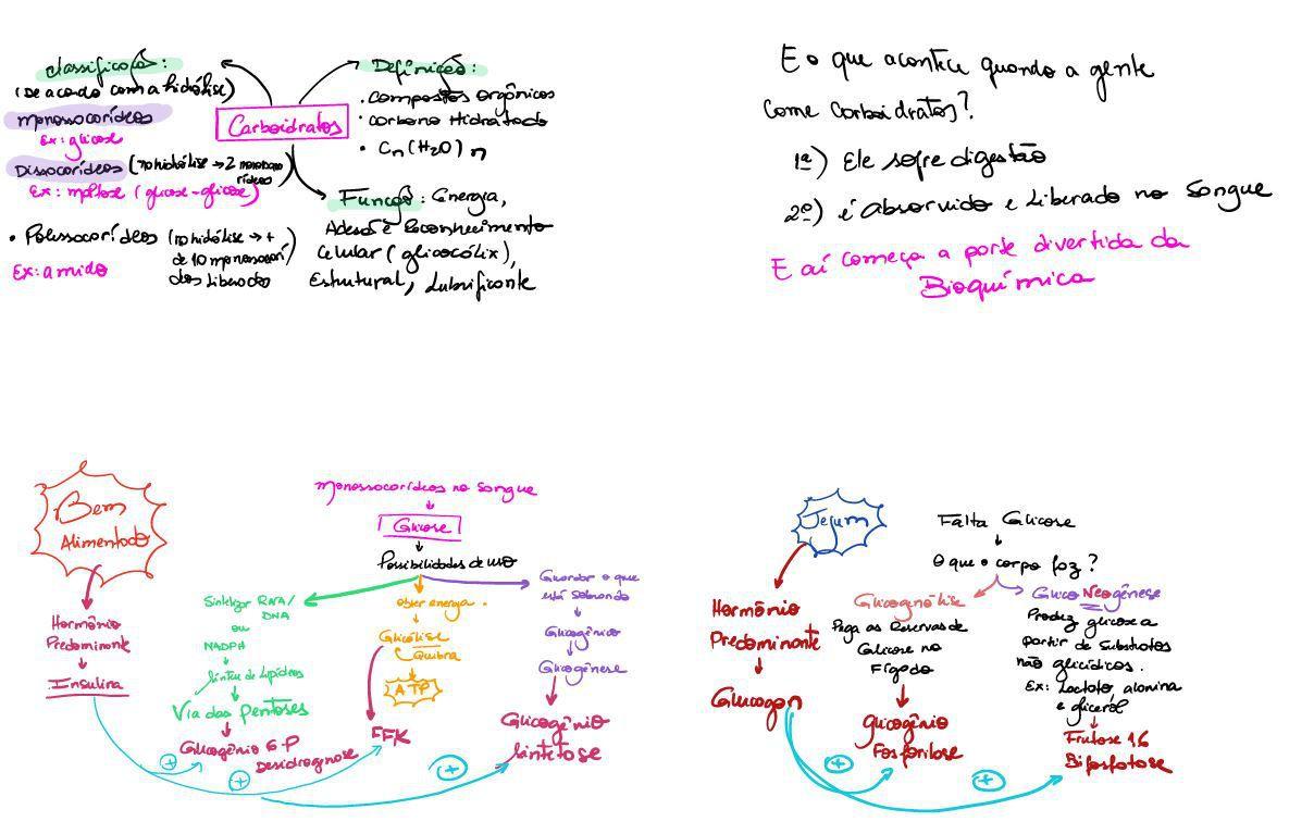 Niños y metabolismo de las proteínas
