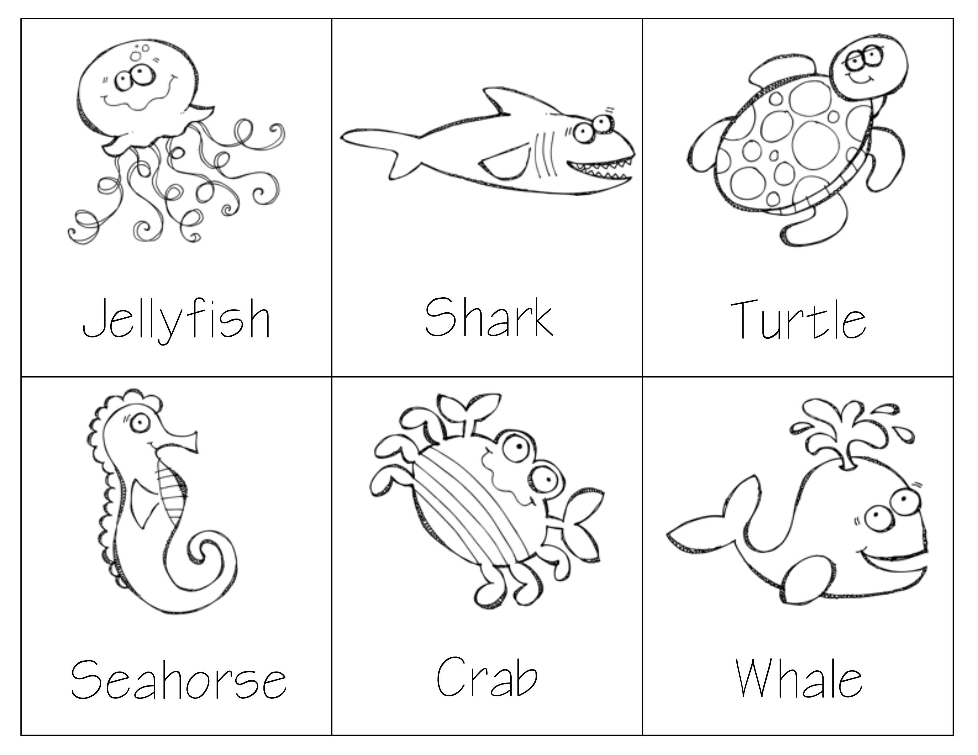 montessori sea animal 3 part cards great for vocabulary development sorting matching and. Black Bedroom Furniture Sets. Home Design Ideas