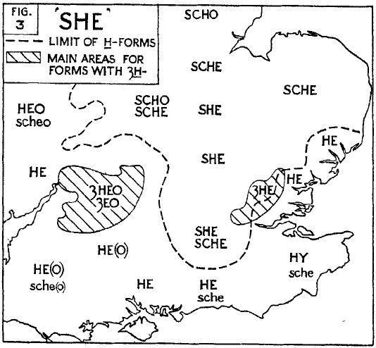 Where Did 'she' Come From?