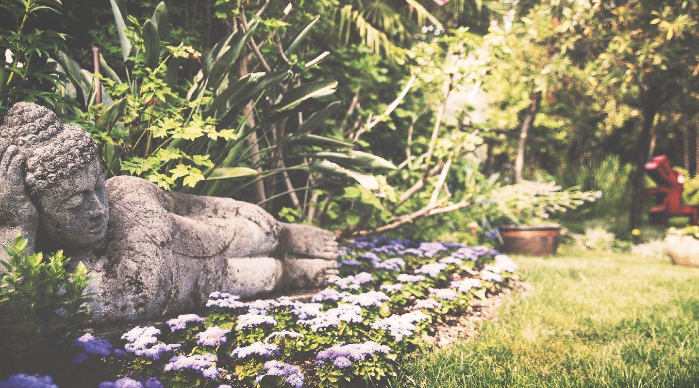 Giardino Botanico Hruska Fondazione Andre Heller At Lake Garda Botanical Gardens Nature Garden Holiday Places