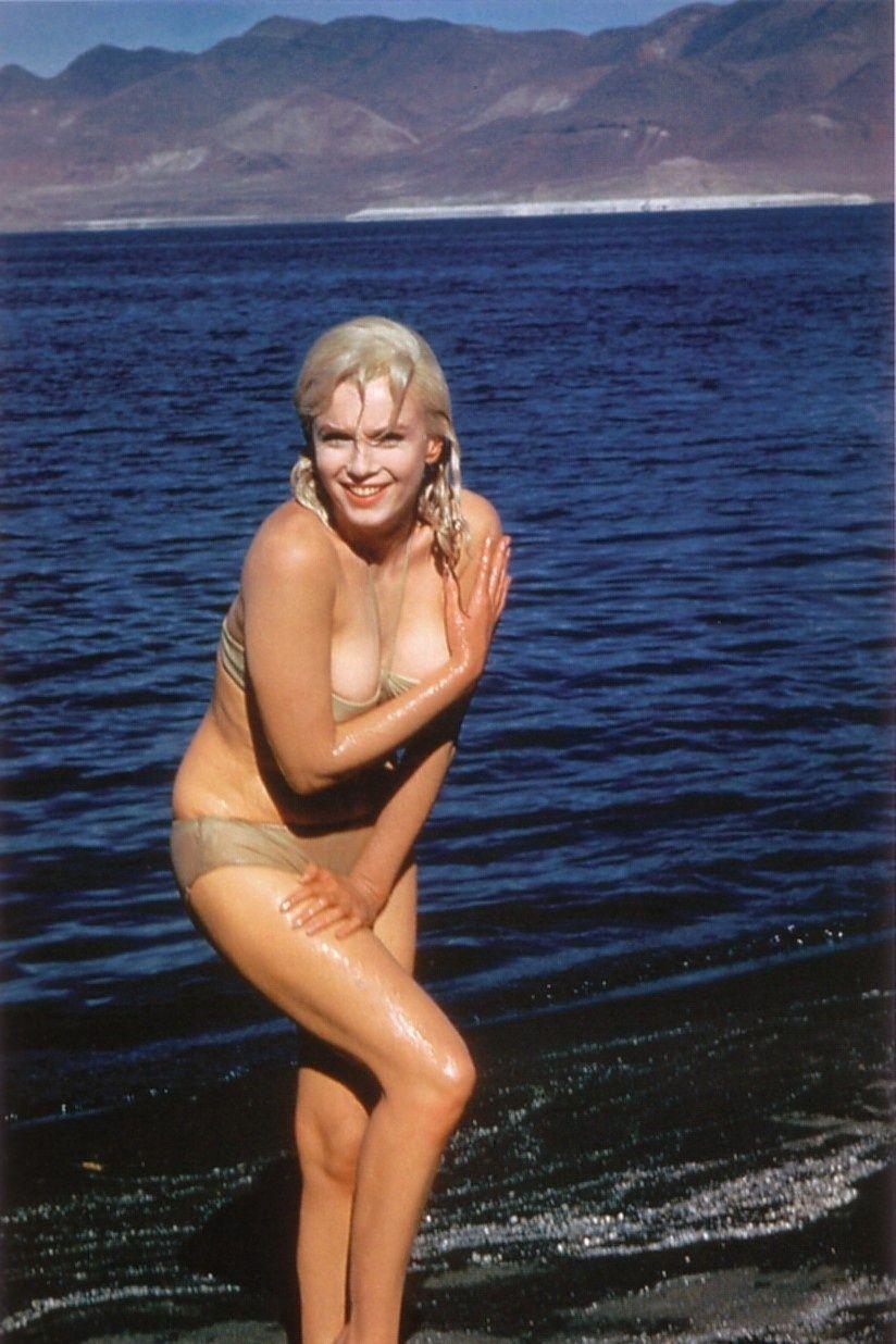 Dior misfit nude