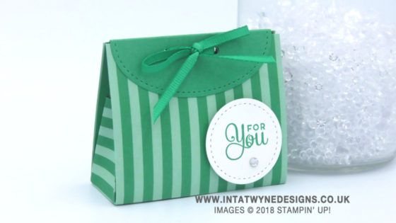 Mini Treat Bag Using In Colour Dsp Stacks By Stampin39 Up
