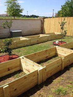 4X8 Raised Bed Vegetable Garden Layout Diy Raised Garden 400 x 300
