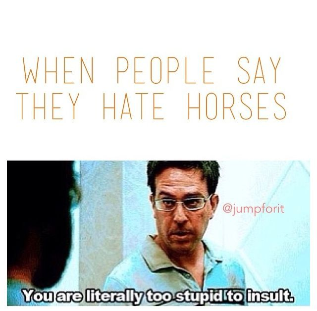 Sorry not sorry. ^^how could anyone hate horses in the first place?!?!? they are such beautiful, majestic creatures:)