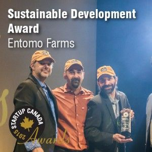 Entomo Farms: National Award for Sustainable Development  Winning awards and teaching people about the benefits of, cricket flour, cricket powder edible insects, edible bugs, insect protein, entomphagy  www.entomofarms.com