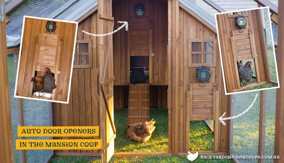 Automatic chicken coop door opener automatic chicken