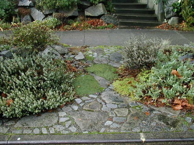 Google Image Result For Http Www Borealislandscape Com Images Slideshow Parking Strip Front Yard Garden Design Sidewalk Landscaping Diy Backyard Landscaping