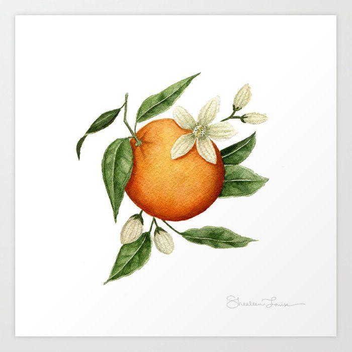 Blooming Citrus Watercolor Art Print by Shealeen L