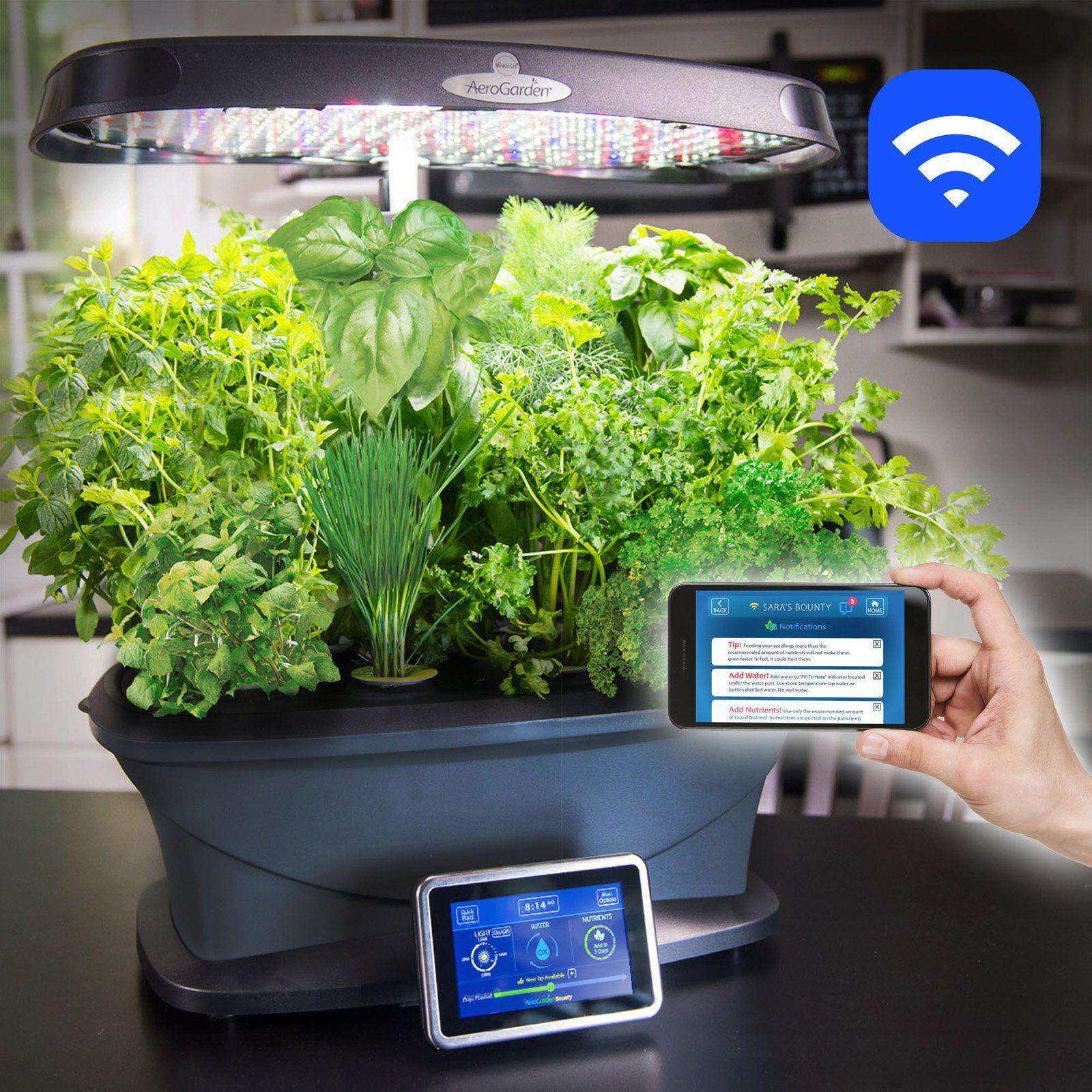 AeroGarden Miracle-Gro Bounty Wi-Fi with Gourmet Herbs Seed