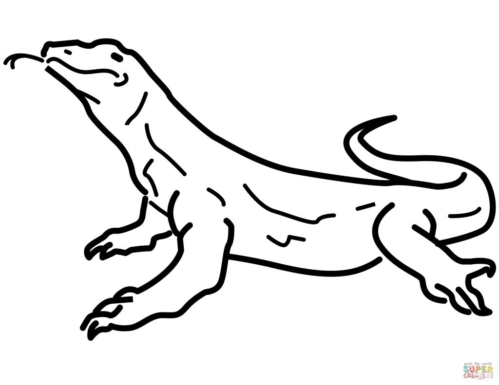 Cartoon Lizard Coloring Pages Free Dragon Coloring Page Coloring Pages Komodo Dragon