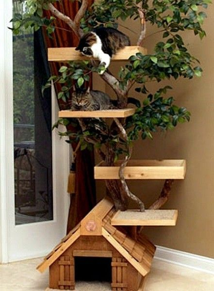 Pet Tree House Nice Looking And Functional At The Same Time Now Will Cats Use It That Is Another Story