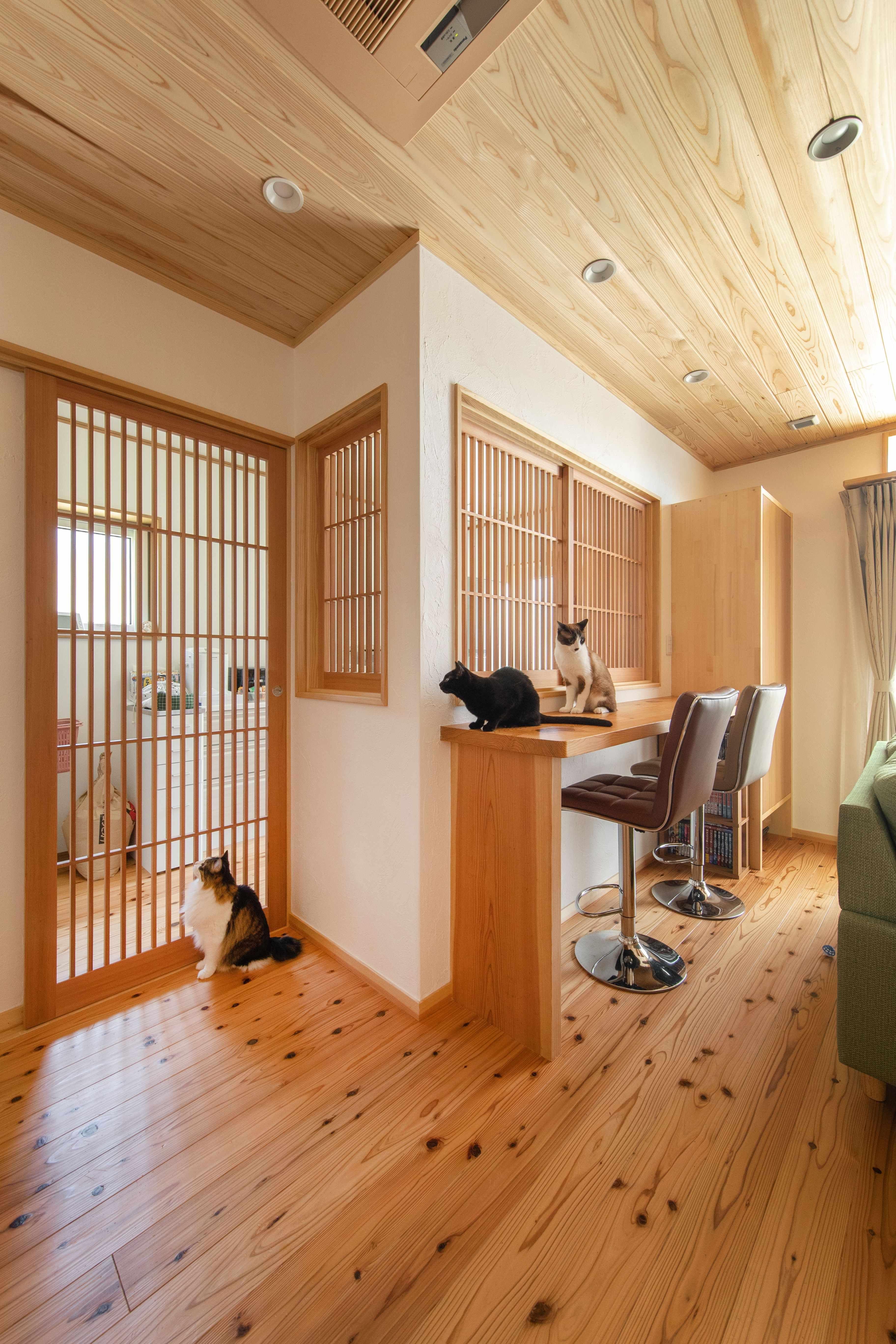 キッチンも猫禁止スペース 手作り格子戸鍵付きです インテリア 青 マイホーム 間取り リビング インテリア