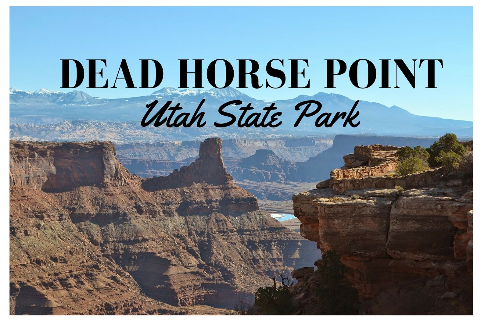 Visiting Dead Horse Point State Park, a dog friendly park