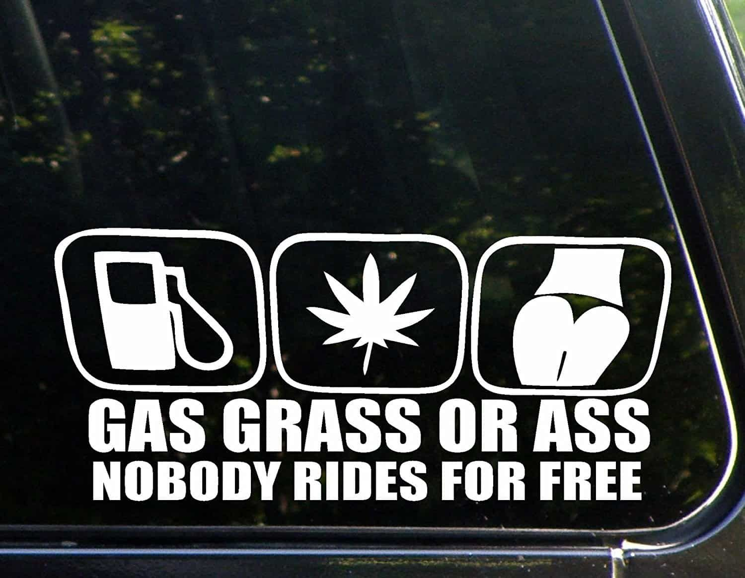 Nobody rides for free car decal giftideas thingsidesire bumperstickers caraccessories cardecals carstickers decals stickers wiperstickers
