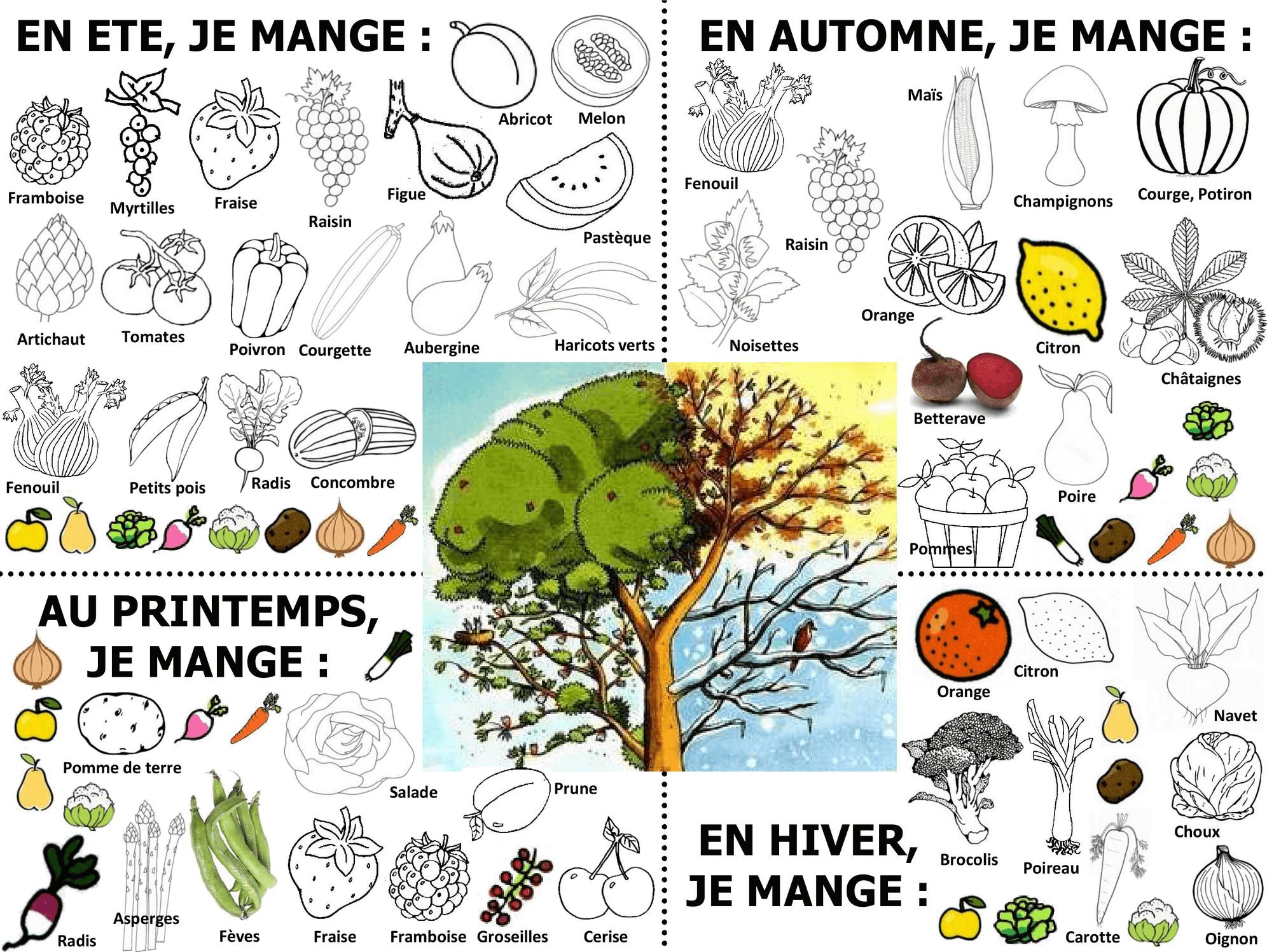Le Calendrier Des Fruits Et Legumes De Saison A Colorier Coloriage Fruits Fruits Et Legumes De Saison Fruits Et Legumes