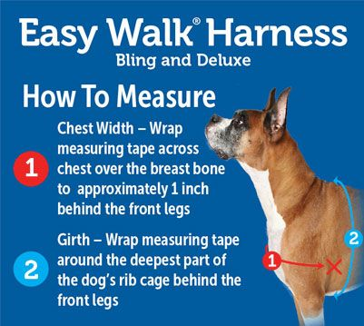 Buy Easy Walk Dog Harness Only 17 75 At Pet Expertise Easy Walk Harness Aggressive Dog Dogs