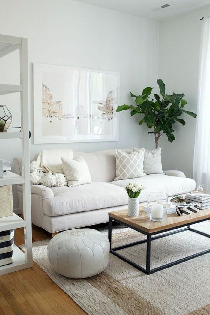 Aménager Une Petite Chambre Grande étagère Pouf Sofa Et Table Rectangulaire Tapis Clair Plante Verte