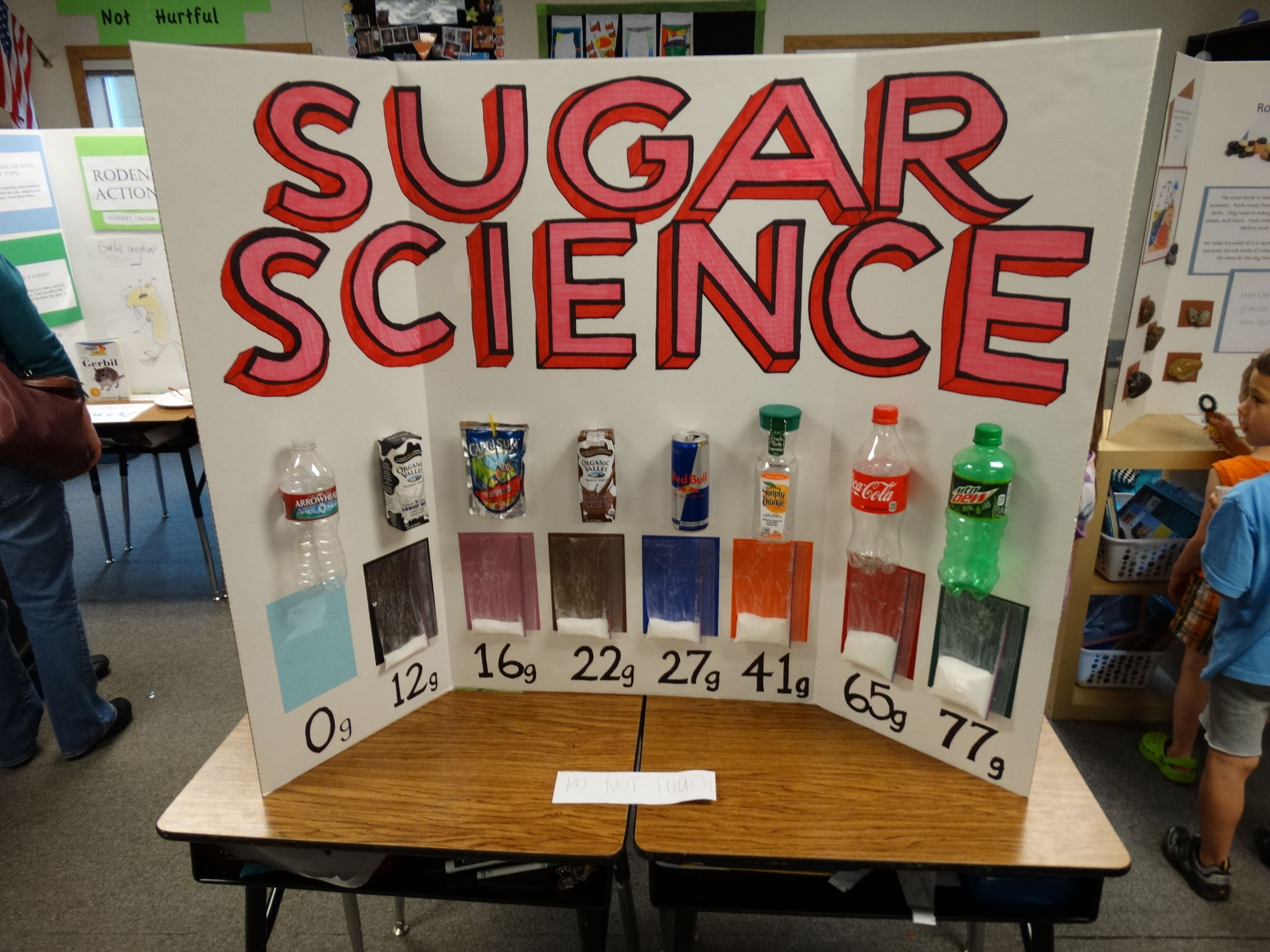 Science fair projects to make at home