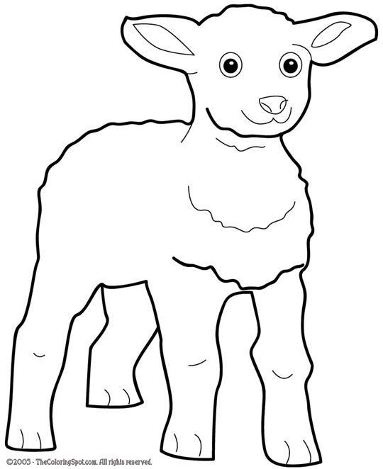 lamb template/colouring page http://freecoloringpages ...