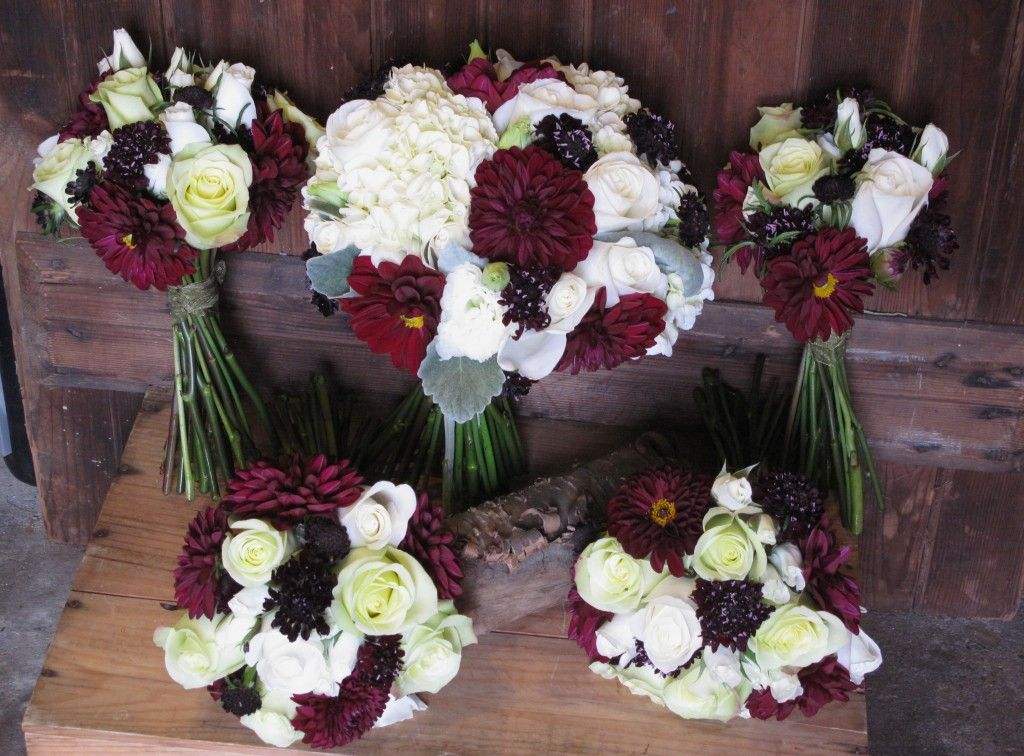 White Hydrangea Burgundy Dahlias Scabiosa Roses Lisianthus And Dusty Miller For A Silvery Accent