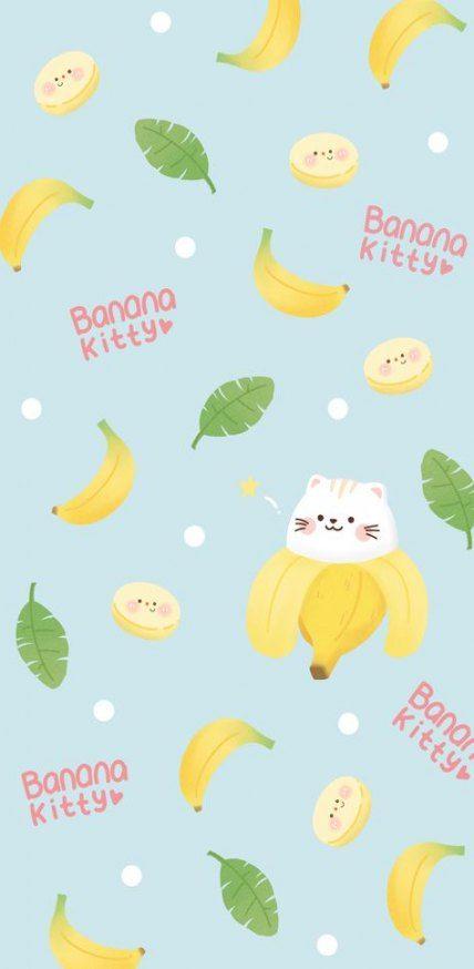 Trendy Wall Paper Iphone Cute Cat Ideas
