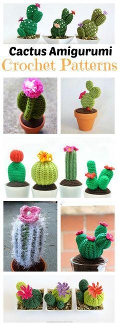 Amigurumi Care Instructions : 10+ Desert Cactus Amigurumi Crochet Patterns - Look ...