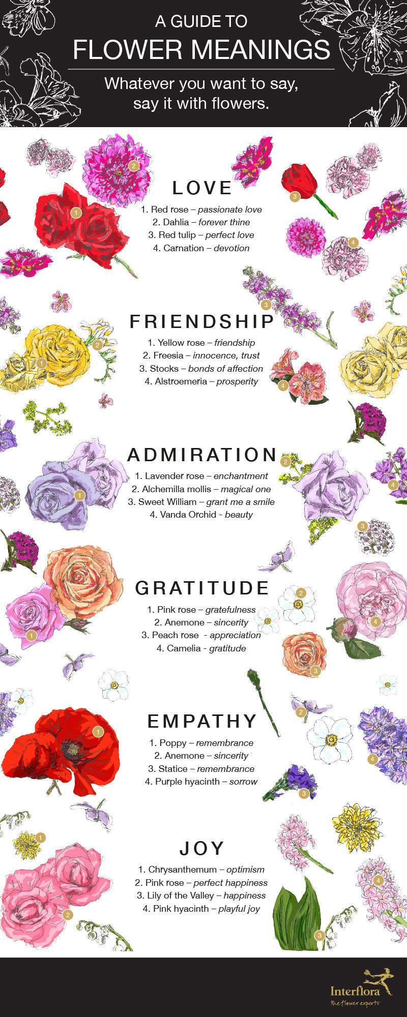 Meanings Flower Meanings Healing Flowers Rose Flower Quotes