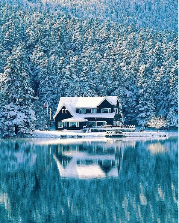 This is an absolutely perfect location. Walk right out into the beautiful snow and cold. #snow #winter #cold #lakeside