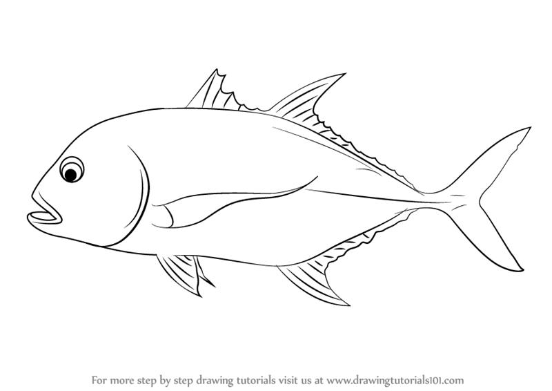 how to draw fish tuto
