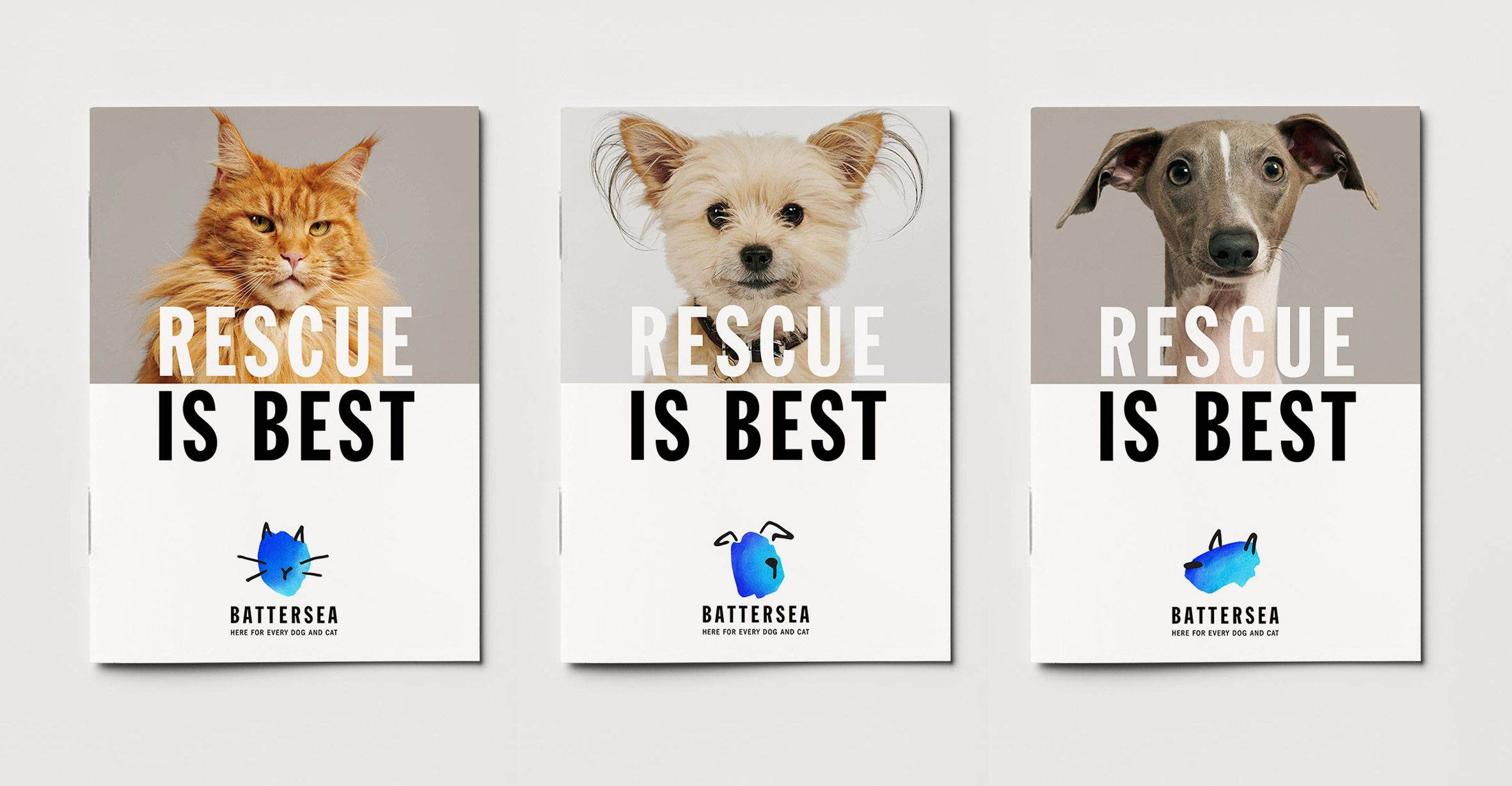 Pentagram Designs Rebrand For Battersea Dogs Cats Home Pentagram Design Battersea Dogs Animal Rescue Logo