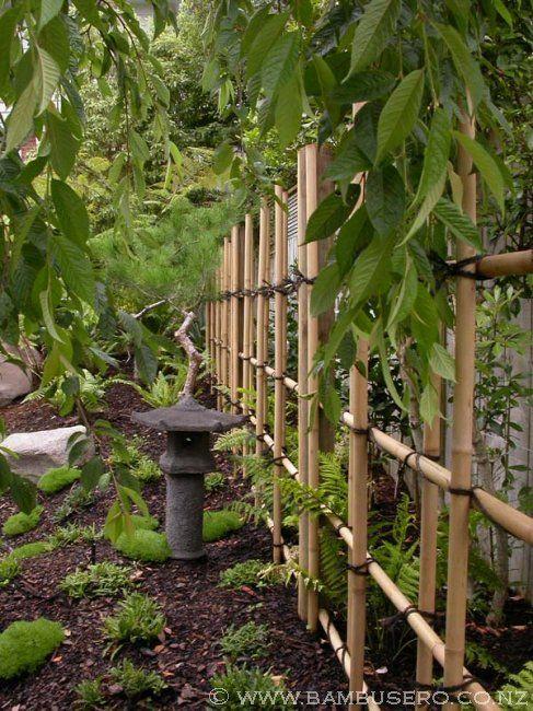 Making Bamboo Trellis Nz Bamboo Fences New Zealand Bamboo