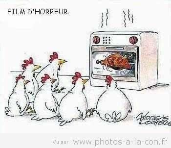 humour par l'image - Page 3 6dc9521f1a5da46807805e73b66c355e